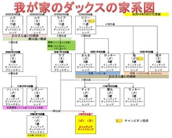 140522時点我が家のダックス家系図.JPG