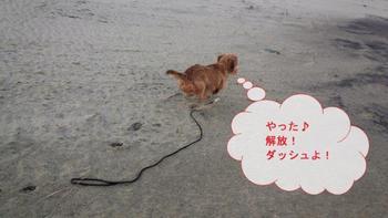 高浜2.jpg