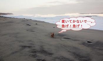 高浜5.jpg