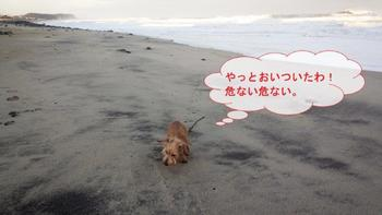 高浜6.jpg
