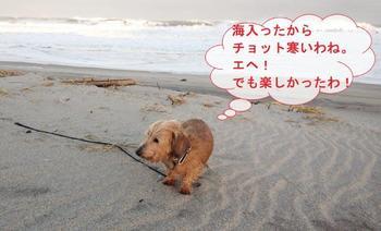 高浜7.jpg